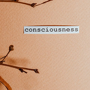 Ein Blatt Paperi auf dem Zweige mit Blütenknospen liegen, sowie ein Zettel mit dem Wort Cosnsciousness